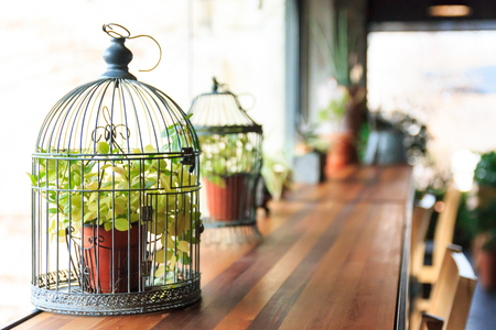 decorative birdcage with plant pot on the table