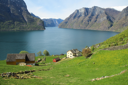 Calm and peaceful landscape. Majestic landscape of fjord in Norway 免版税图像