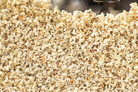 popped: Fresh hot popcorn just popped by a popping machine. Front view.