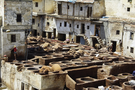 skins: Tannery, processing of skins Editorial