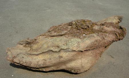 est: Cette bombe volcanique est originaire de la chaine des puys,des volcans d Auvergne Stock Photo