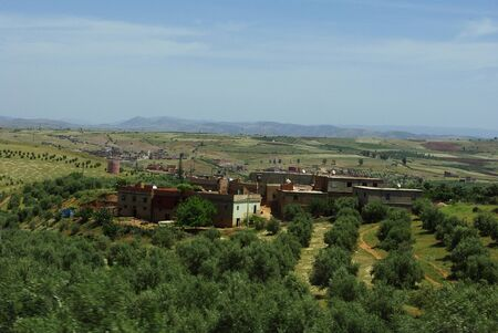 olive groves: Moroccan village with olive groves