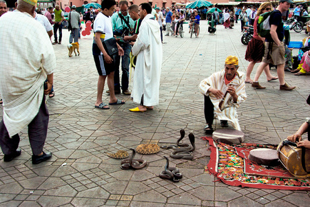 Place in Marrakech with tourists and snake charmer