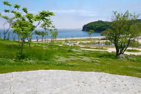 ajax: Campus FEFU about  Russian  Lanshaftny-park area  Editorial