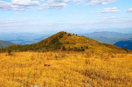 Great Sparrow Ridge. Stock Photo