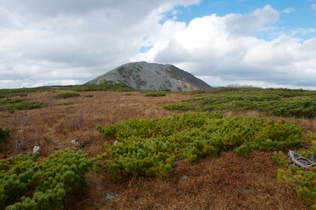 alpine tundra: The top of Mount Snow. The height of 1854 meters. The alpine tundra.
