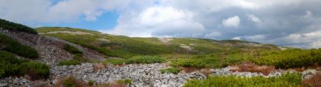 alpine tundra: Spurs of rock slides Mount Snow. Elfin cedar. Panorama.