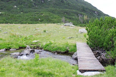 walking path: Wooden walking path above the mountain river.