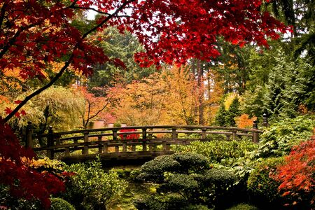 Japanese garden captured on a cloudy day in fall colors.  Imagens