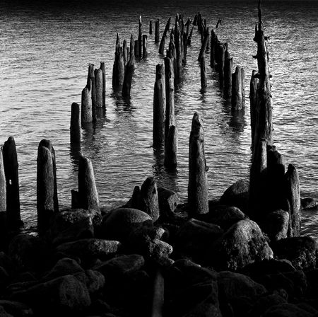 pilings: Pilings at Cape Disappointment, Washington Stock Photo