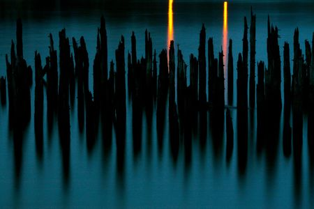 Pilings on the Columbia River in Portland, Oregon