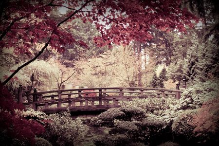 arched bridge in a japanese garden stock photo picture and royalty free image image 4634257 - Japanese Garden Cherry Blossom Bridge