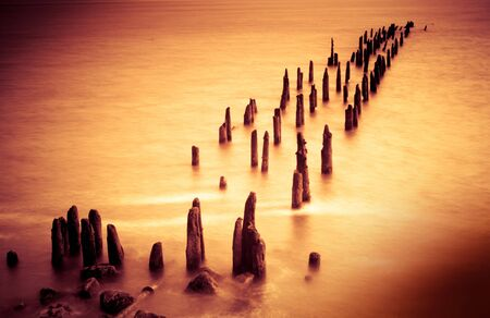 pilings: Pilings on a river