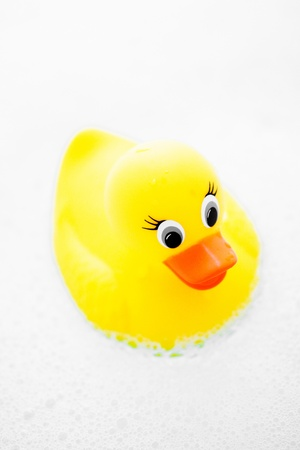 A child's play toy, a rubber ducky in a bubble bath. Stock Photo - 11505500