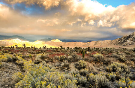 the sierras: Mountain range in the Eastern Sierras with the desert in the foreground.
