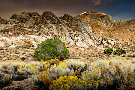 sierras: Mountain range in the Eastern Sierras with a desert foreground. Stock Photo