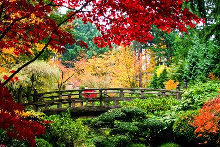 garden fountain: A bridge in a japansese garden during Fall season