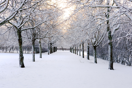 Winter and snow come with Winter season in Scandinavian countries. Stock Photo