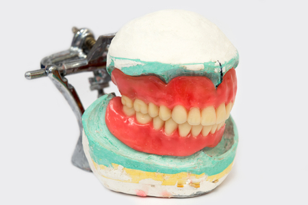 prosthetic equipment: Generic image of a denture or crown used in modern dentistry.