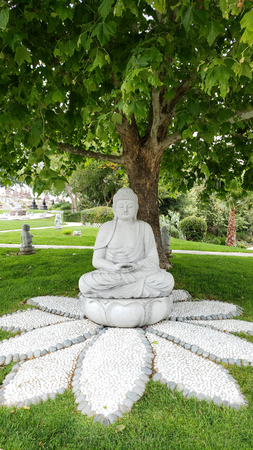 Images of the holy Buddha adorning garden scenery.