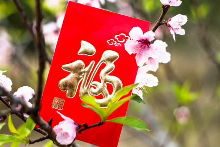 red packet: Chinese red packet and peach blossom