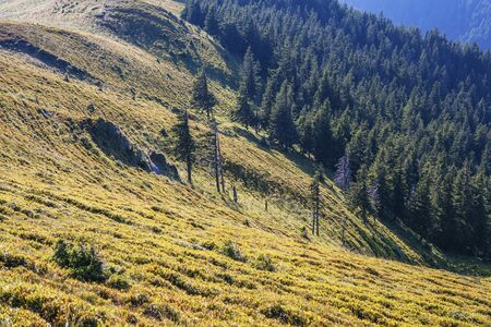 Awesome mountain landscape, nature and its beauty, located on the Red Mountain, Romania.
