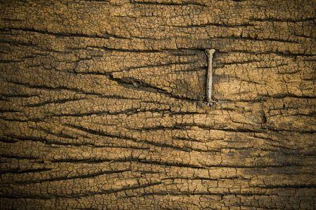 rusty nail: a nail on wood