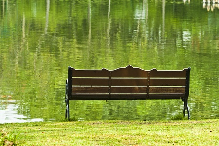 Bench over green lake in the park