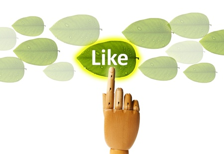 Saved green with touch screen, wooden hand pressing leaf button Stock Photo - 9945189