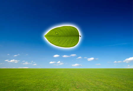 Nature and Technology in concept of saved green. Stock Photo - 9945249
