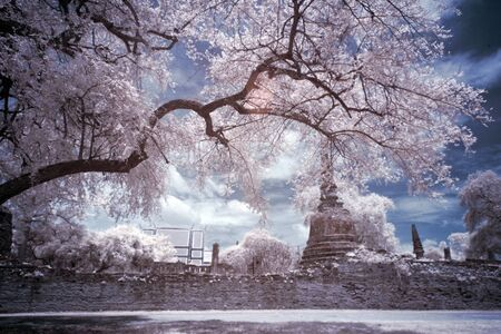 Infrared Landscape Stock Photo - 13897722