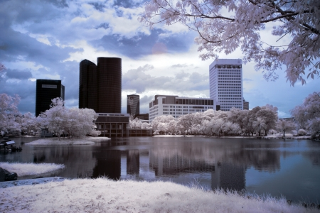 Infrared Landscape Stock Photo - 13893605