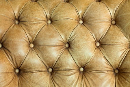 antique furniture: The sepia of sofa bed genuine leather upholstery