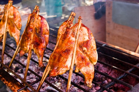 Grilled chicken in the oven Stock Photo - 13272981