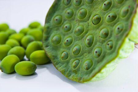 graine lotus: Graines de lotus