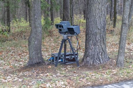 speed camera is standing in the forest. shallow depth of field. there is tinting. Banco de Imagens
