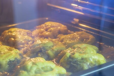 cooking meat in the oven at home. The door is closed. skyline littered 版權商用圖片