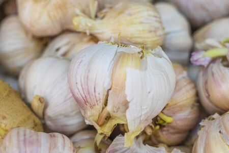small market. sales of garlic. close-up, and shallow depth of field. 写真素材