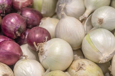 small shop. onions are on display. red and white. close-up 写真素材
