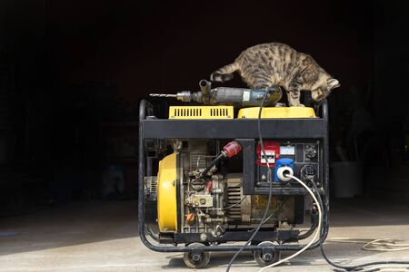 stand-alone diesel generator to supply electricity in an emergency. Yellow color. Serves not a large residential building. On it lies an electric drill. A domestic cat is sitting.