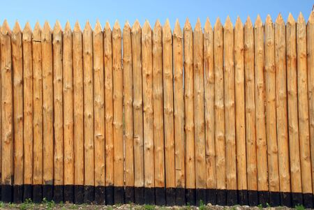 paling: Wooden paling from the sharp raw logs