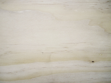 Background of wood texture Stock Photo - 14160784