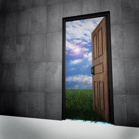 puertas viejas: Puerta antigua de la vendimia con el mundo nuevo, la puerta se abri� en la hierba con un fondo bonito cielo con nubes blancas Foto de archivo
