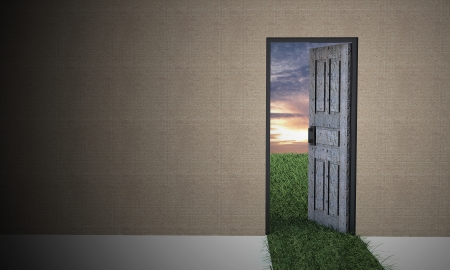 dream vision: Open door to new world from darkness.