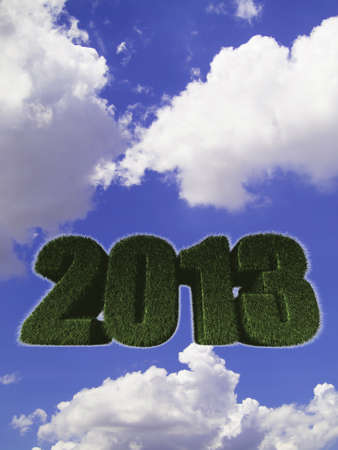 2013 New Year sign of green grass against the sky. Eco concept  photo