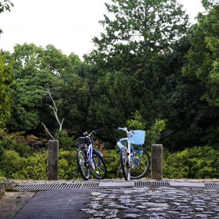 Bicycles of couple in countryside meadows photo