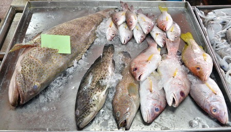 variety of fresh fish seafood in fresh market  photo