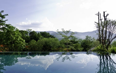 Cloud and tree reflections on the infinity pool