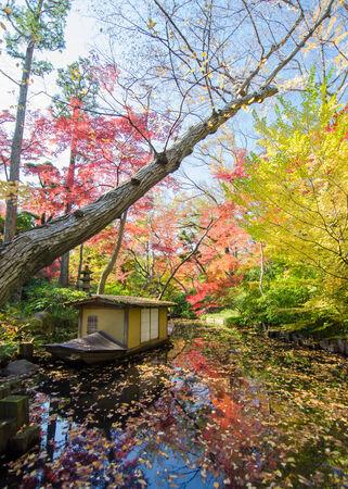 Japanese garden in autumn, Tokyo, Japan Stock Photo - 25672291