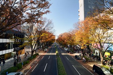 TOKYO - NOV 24  People on Omotesando Street on November 24  2013, Omotesando street sometimes referred to as Tokyo